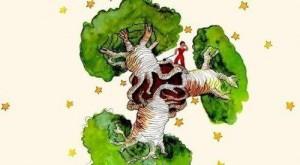 petit-prince-baobab-e1528901547957